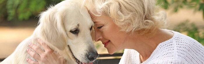 Man's Best Friend: Guide to Recognizing Dementia in Your Dog